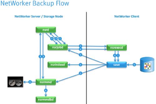 networker_flow